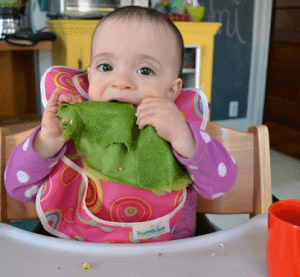 baby green crepe recipe