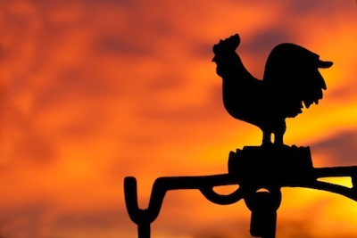 Rooster weather vane in silhouette