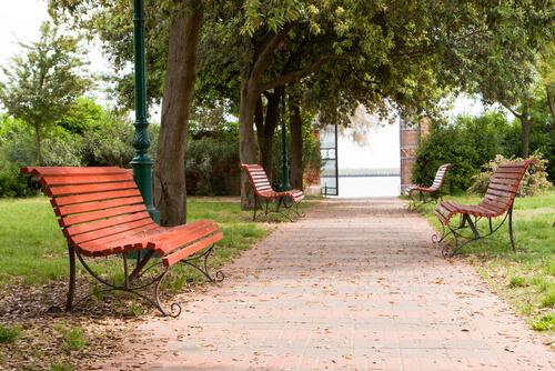 a empty park