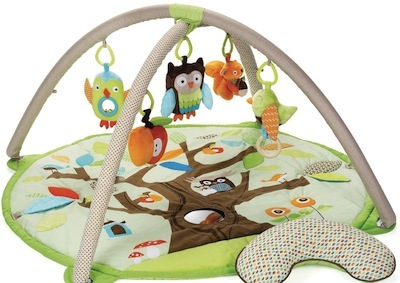 a baby activity gym