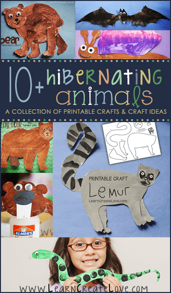 Hibernating Animals Collection