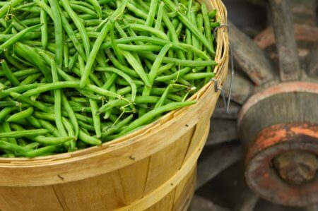 Green beans in a basket with a wagon wheel in the background