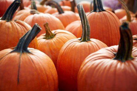 a group of pumpkins