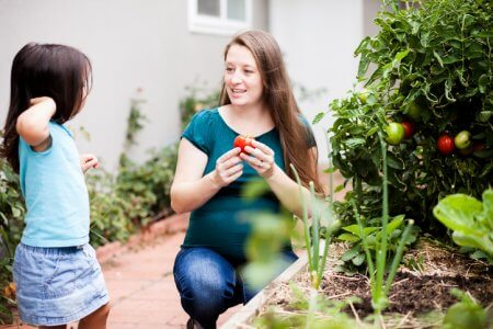 Image of a pregnant mother picking tomatoes with her daughter in their garden