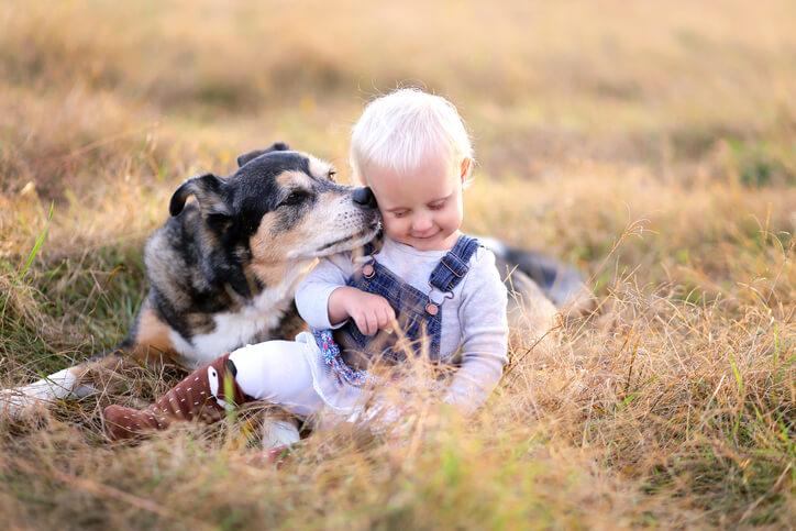 a dog licking a kids face